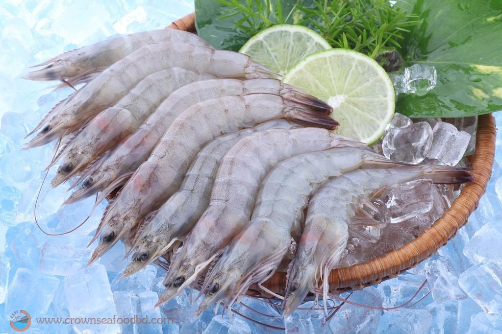 SW Harina HOSO shrimps